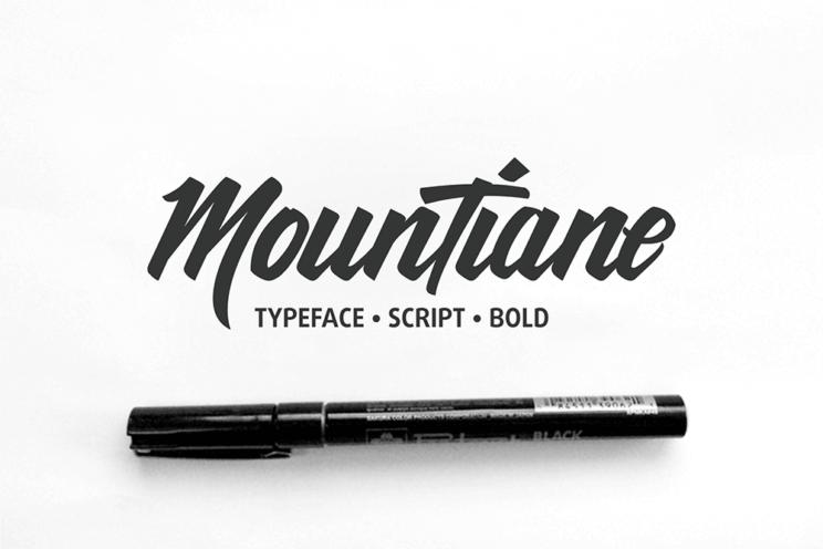 Bundle-Script-Typeface-(off-50+)-04