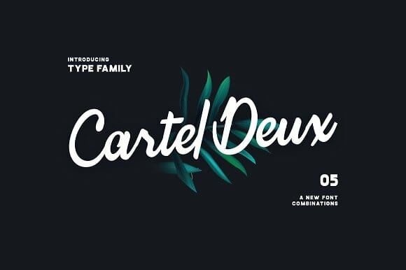 cartel-deux-premium-script-and-handwritten-fonts